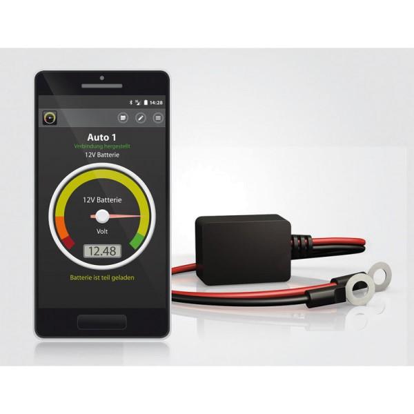 Battery-Guard Batterieüberwachung mit Gratis-App 6V 12V 24V